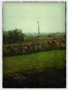 Wordless Wednesday: Rainy Day