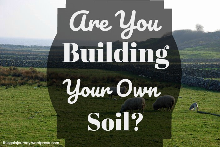 Are You Building Your Own Soil?